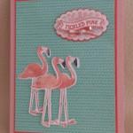 Flamingo Lingo