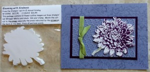 Stamp Out Fussy Cutting - Blooming with Kindness